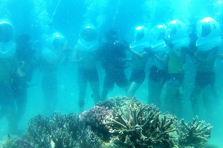 đi bộ dưới đáy biển ở vịnh san hô nha trang