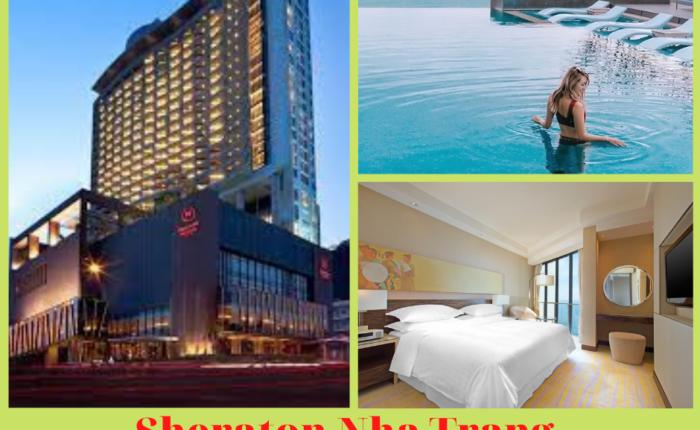 khách sạn Sheraton Nha Trang (9)